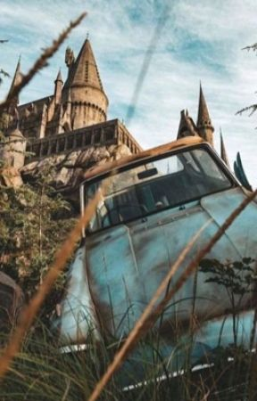 Harry Potter Oneshots (x Readers) by umber_