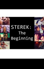 Sterek: The Beginning by Chaseramos48