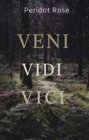 VENI VIDI VICI by TerrorALSpace