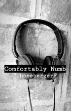 Comfortably Numb by SchneebergerF