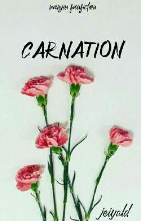 Carnation by jeiyald