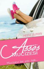 Assos Mucizesi (Assos I) by aleren