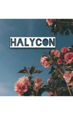 • HALYCON •  by tommohearted91