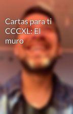 Cartas para ti CCCXL: El muro by fiestapauno