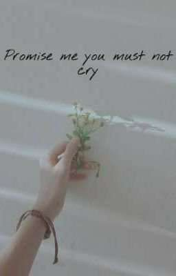 Đọc truyện Promise me you must not cry