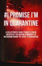 #ipromiseiminquarantine by notamurderer-ig