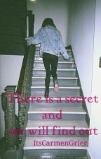 There Is A Secret And We Will Find Out (Magcon) by ItsCarmenGrier