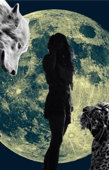 The Werecat who hates Werewolves.