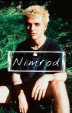 Nimrod // B.J.A Fan fic by BilllieJoeMama