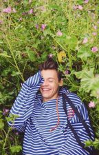 Where Do Broken Hearts Go?|| Harry Styles Fanfiction by nicsyhoran17