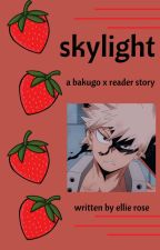 'skylight':Bakugo x Reader by thunder_roses