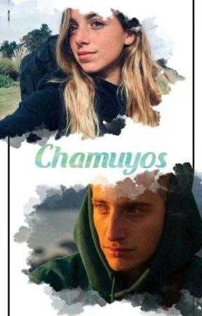 Chamuyos *Wos* by blackandgreen_