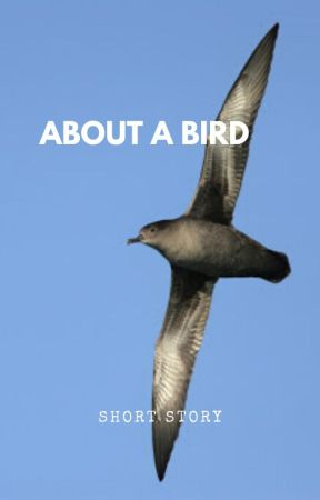 About a bird (Short story) by BantamOwl