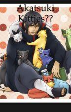 Akatsuki Kitties?? (Akatsuki FanFiction) by Keiko_Kimura_14