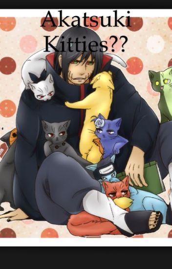Akatsuki Kitties?? (Akatsuki FanFiction)