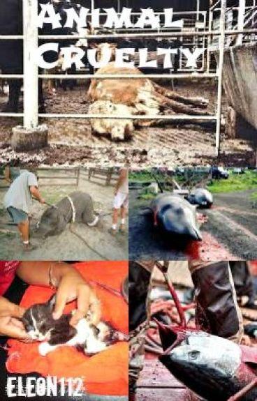 Animal Cruelty by eleon112