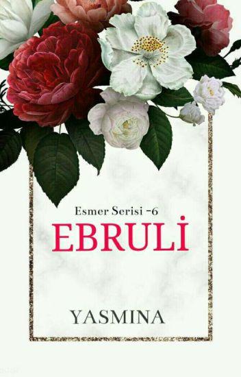 ESMER SERİSİ VI- EBRULİ