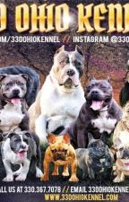 330ohiokennel by 330ohiokennel