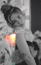 north   c.mc by SKATEBCARD