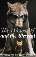 The Werewolf and the Werecat by vampires18