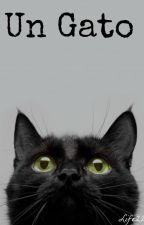 Un gato by Cleo_Santillan