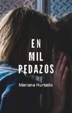 En mil pedazos by Barposa