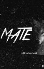 Mate//Werewolf Shawn Mendes by joshuawdone