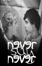 Never • Say • Never § a Niam Horayne collab fanfic [AU] by butterfliess