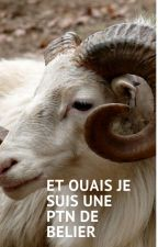 Zodiaque de moi et mes oc's by Chatouny-chan