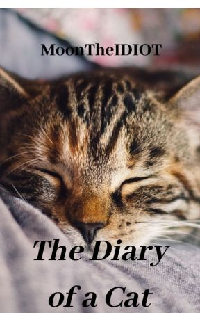The Diary of a Cat by MoonTheIDIOT