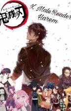 Kimetsu No Yaiba x Male! Reader by Anime_Potato_
