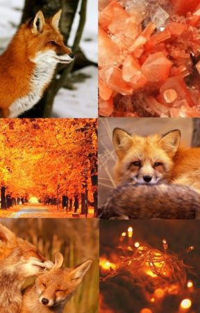 Cynefin - A Fox Therian Story by KodaTheTherian