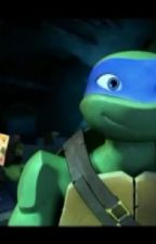 Teenage mutant ninja turtles A demon slayer by Lusheeta