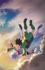 My Hero Hunter (Hunter x Hunter/Bnha crossover by Golden_Snowflake200