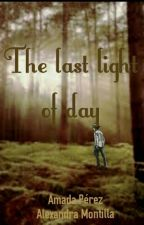 The last light of day (Carl Grimes's fanfic) by DoubleA_fiction