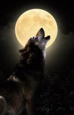 The Elemental Wolf by TamarinCook