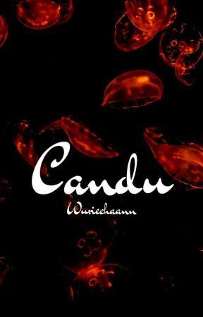 Candu • Bright x Win  by Wuriechaann