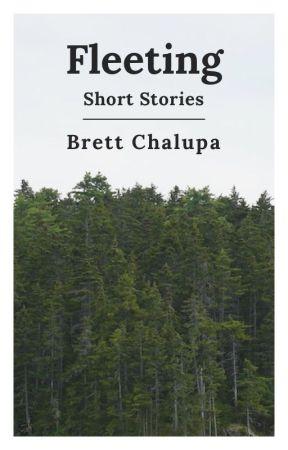 Fleeting: Short Stories by brettchalupa
