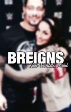 Breigns: Two worlds Meet. by theewwegirl