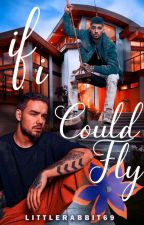 If I Could Fly [AU Ziam Palik] by LittleRabbit69