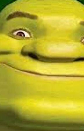 Shreks Missing Toe Meat Chapter 1 Wattpad