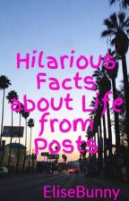 Hilarious Facts about Life from Posts by EliseBunny