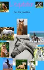 L'équitation by la_cavaliere