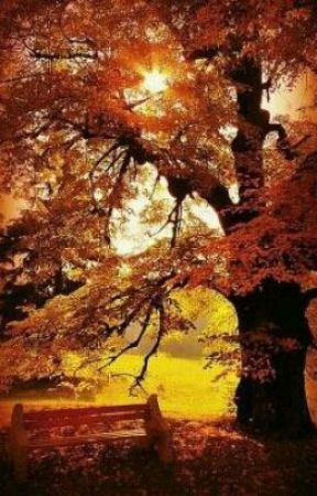 Apocalipsis-Malapit Na ang Dakilang Kasukdulan Nito