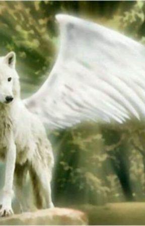 A Werewolf of Prophecy by sexyangel96