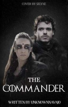 The Commander Robb Stark by unknownnavajo