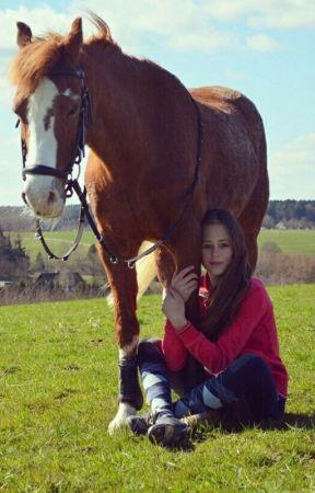 Arten von Reitern by PersieBee