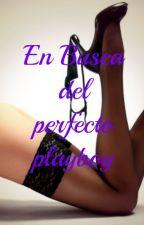 En busca del perfecto Playboy by DanToroC
