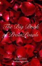 The Big Book of PromPosals by koalasandowls