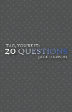 Tag You're It: 20 Questions by JackHarbon